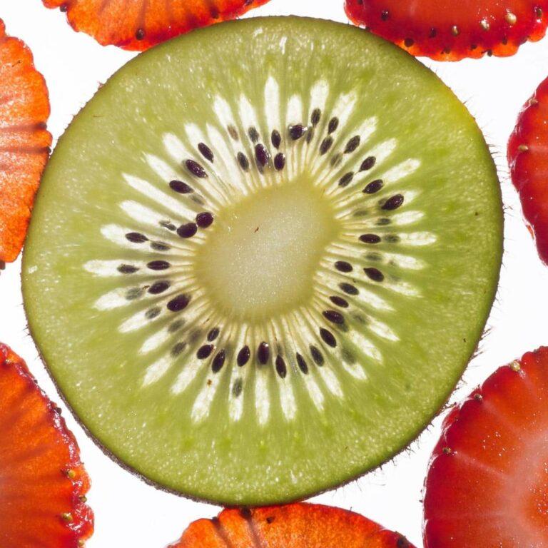 Fatia de kiwi retroiluminada
